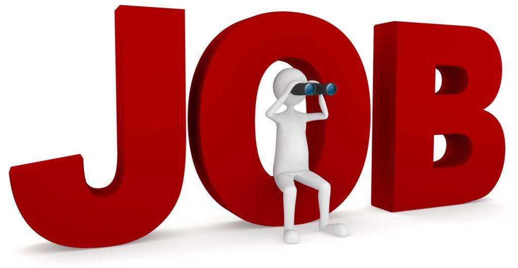 job wordpress